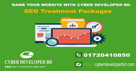 SEO Service Provider Company in Bangladesh